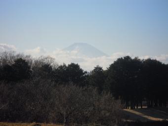 朝ははっきりしてたけど富士山210113