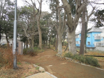 花水川沿いから緑道210127