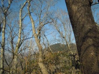 高取山見えている割には210222