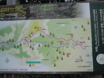 森林セラピーロード鐘が岳210226