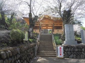 木の香りの新しい山門210329