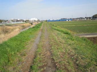 玉川右岸途中で砂利道210329