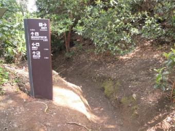 高久神社からの道に出た210331