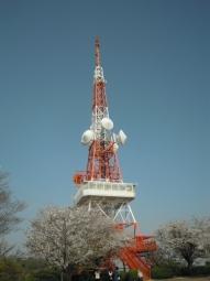 湘南平210331登れるところまで登りました