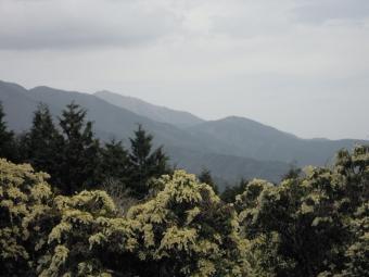 大山~高取山 御天気の割には見えてます210404