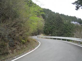 林道を横切って210404虫沢林道
