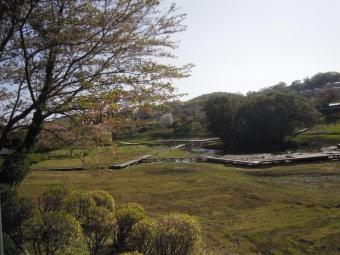 厳島湿性公園210407