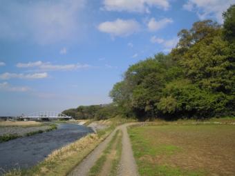 花水川右岸を通って210407