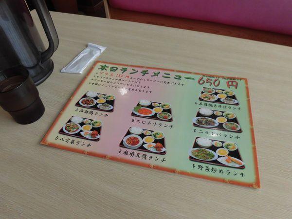 CIMG93251aa.jpg