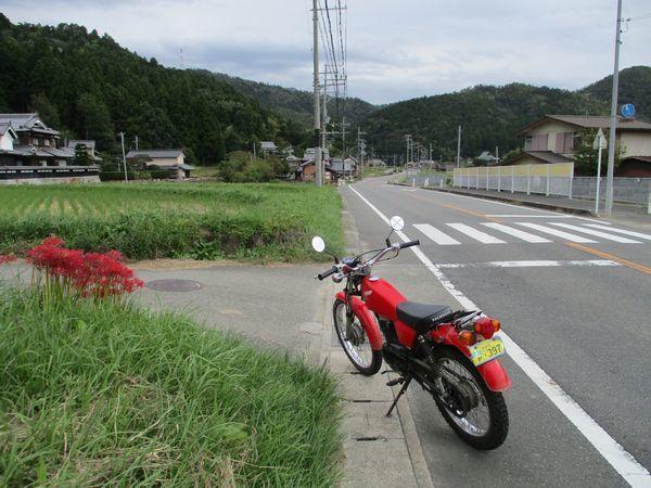 IMG_37751.jpg