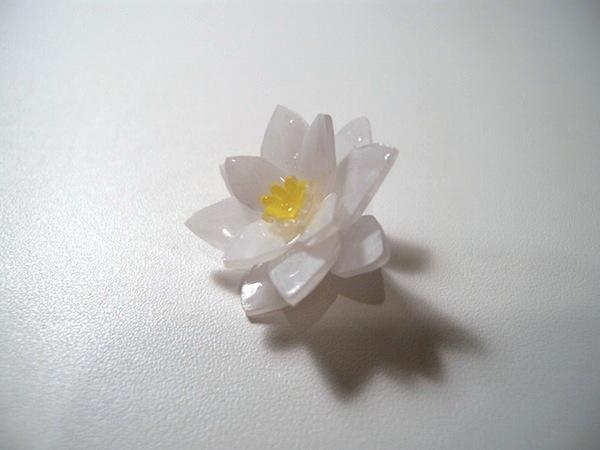 200322-0001.jpg