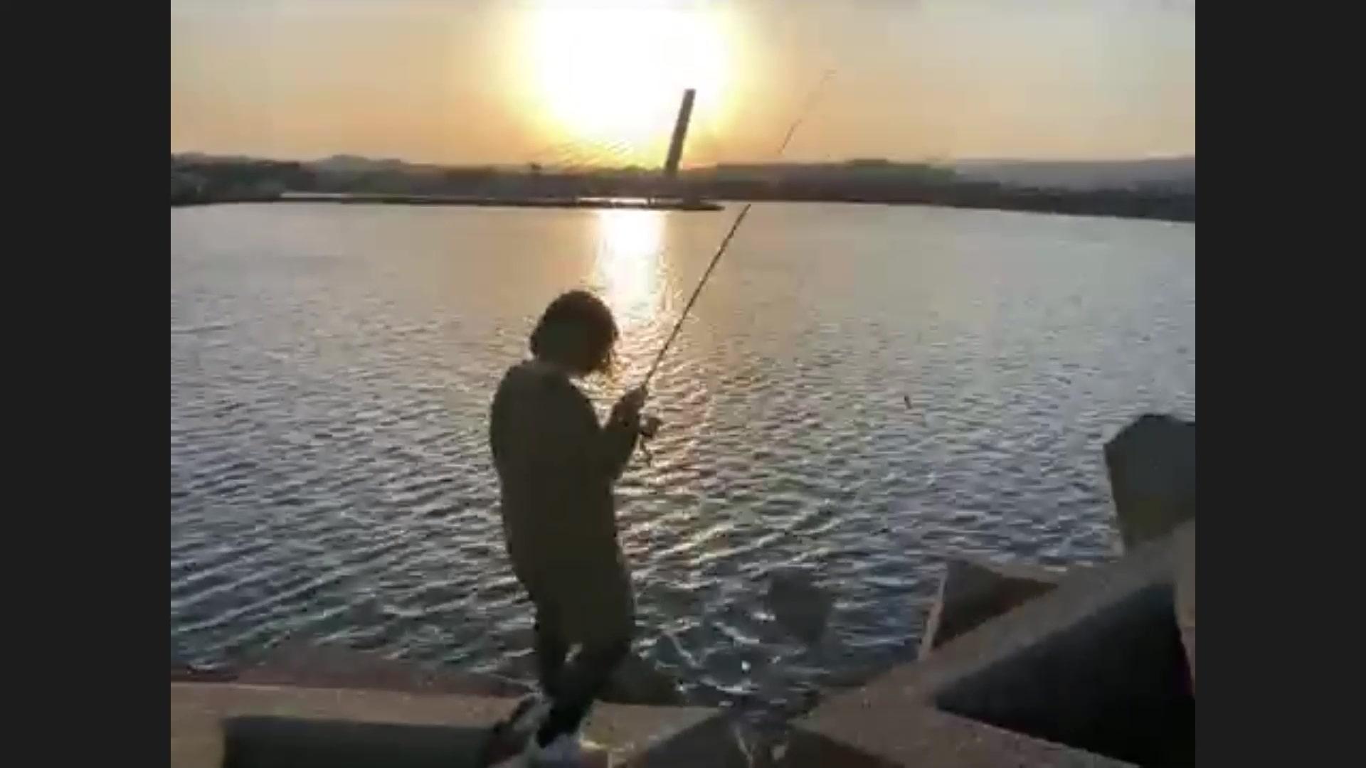 氷見オンライン魚釣り報告08