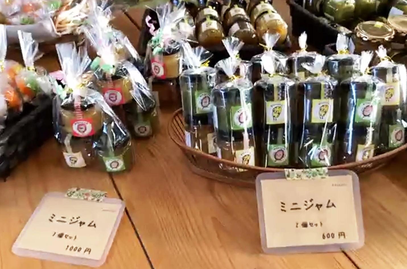 掛川フルーツカントリーオンライン10