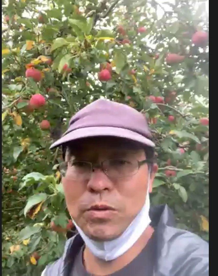 リンゴハンター報告_12