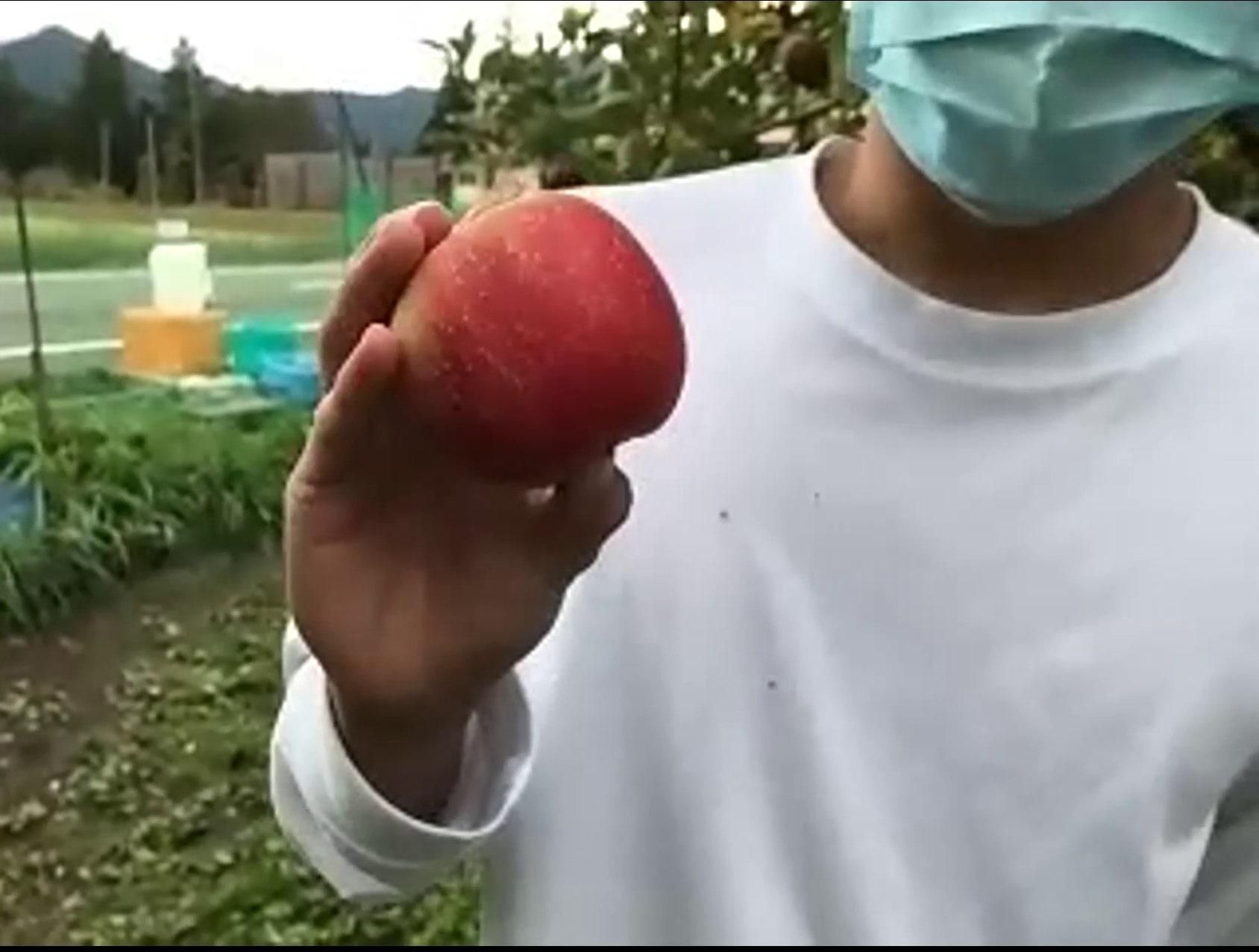 オンラインフェス4芸農報告_14