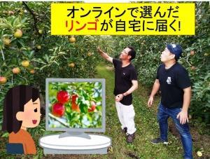 リンゴハンター_10