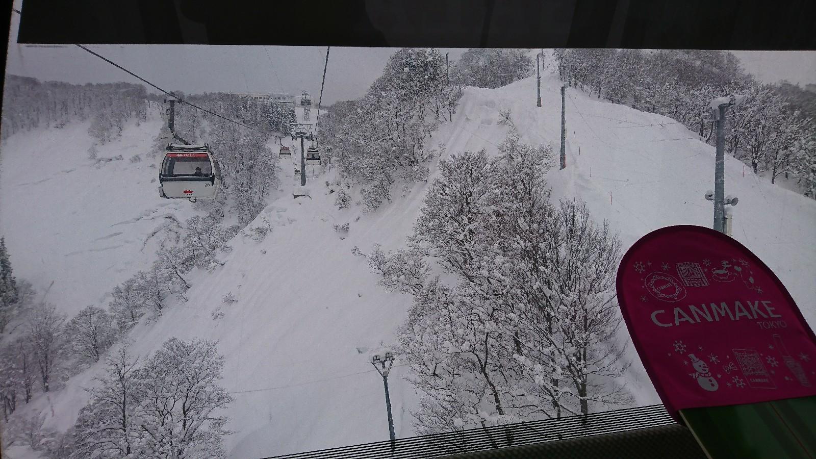 湯沢 量 ガーラ 積雪