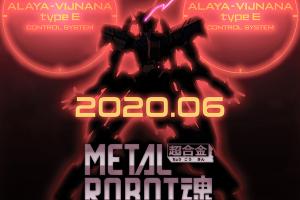 METAL ROBOT魂 ASW-G-XX ガンダム・ヴィダール!?t