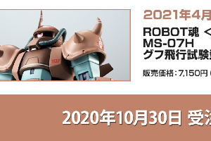 ROBOT魂 MS-07H グフ飛行試験型 ver. A.N.I.M.E.t