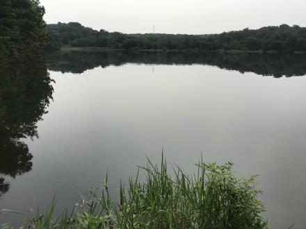 200808fishing (1)