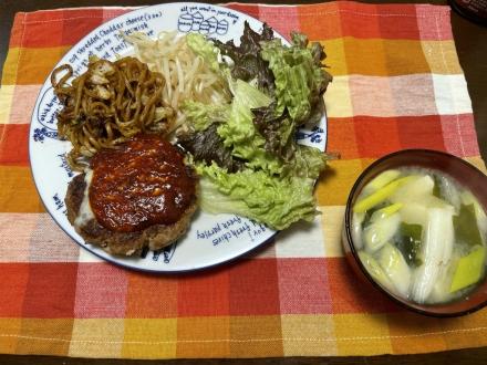 210319Hamburg steak