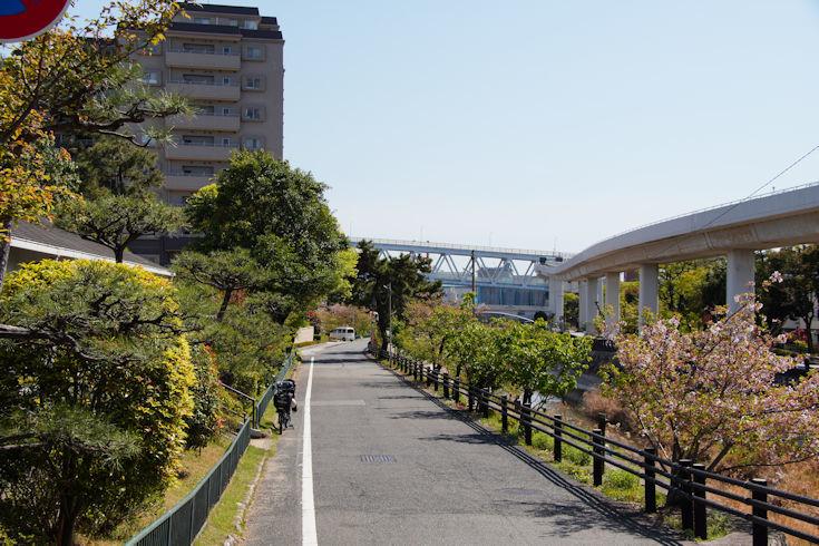 210410住吉川散歩8