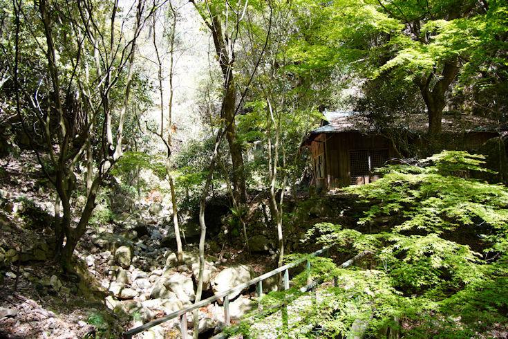 210411八幡谷ハイキング3