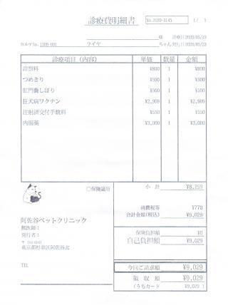 ライヤ診療費明細書200523
