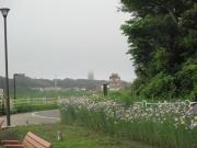 2020/5/10(日)境川遊水地公園ポケットパーク