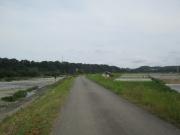 2020/5/30(土)藤木から横道へ