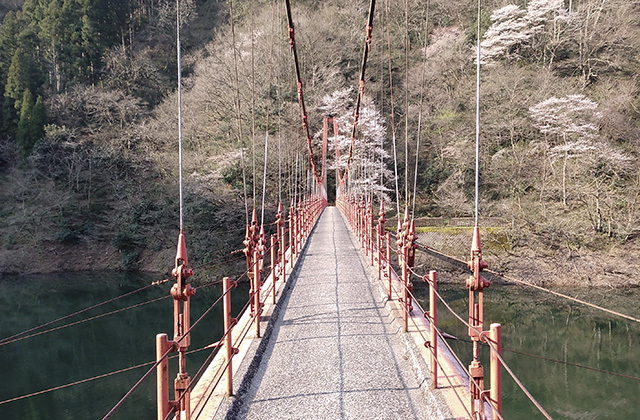 200404-001.jpg