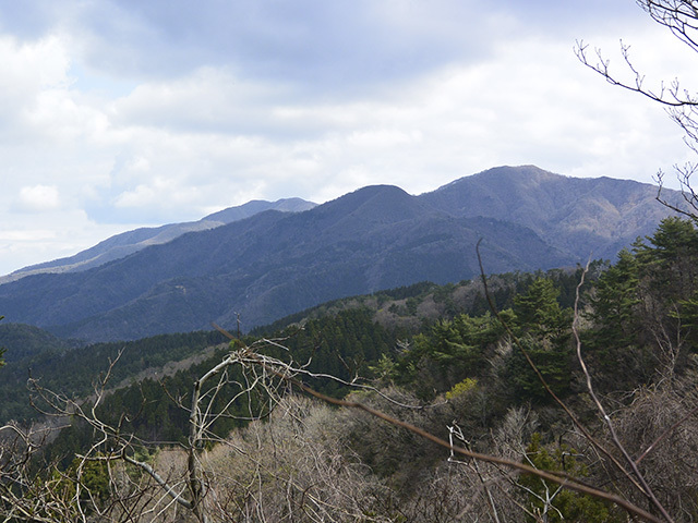 200411-011.jpg