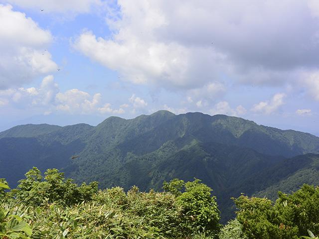 200719-006.jpg