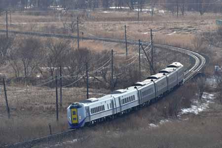 2003174.jpg