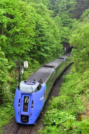 2006151.jpg