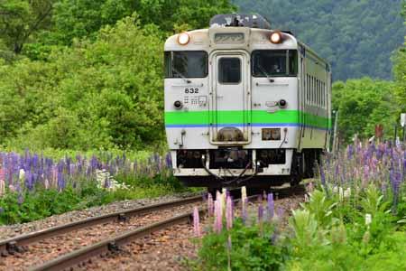 2006232.jpg