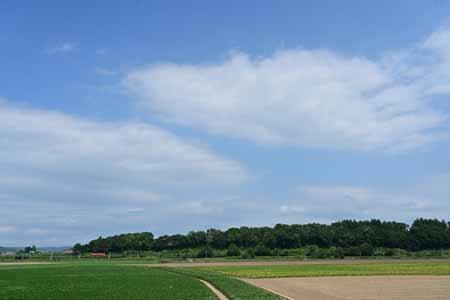 2008201.jpg