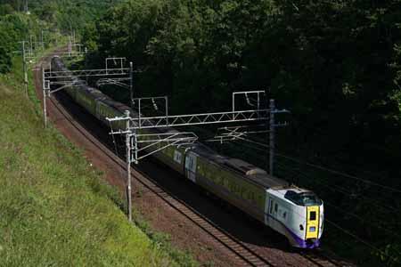 2008254.jpg