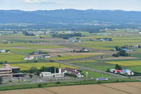 2008255.jpg