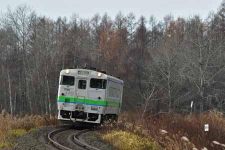 2011161.jpg