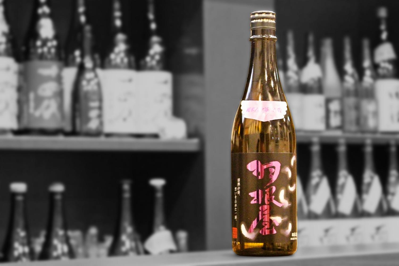 羽根屋翼純米大吟醸生酒202103-001