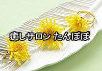 iyashi-saron-tanpopo1.jpg