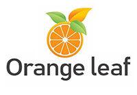 orange_leaf1.jpg