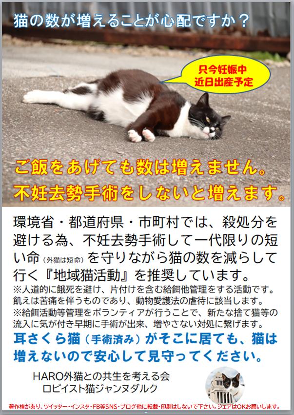 不妊手術をしないと猫は増えます。餌やりで猫は増えません。 短命 青 著作権あり