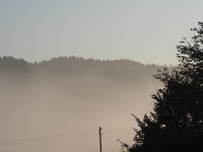 PA200365.jpg