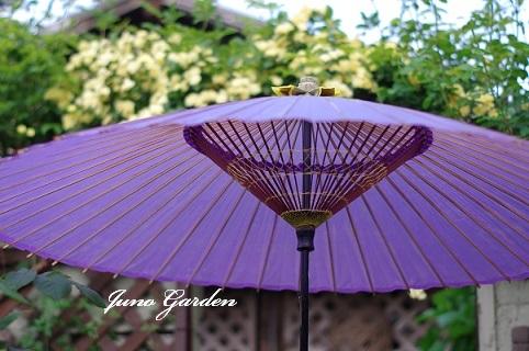 傘200506