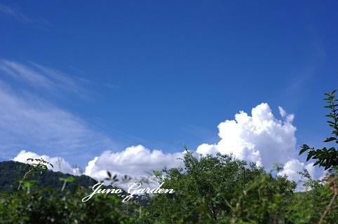 綿雲200905