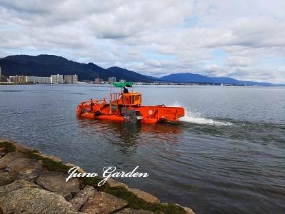 刈り取り船200914