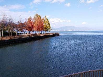 琵琶湖紅葉201119