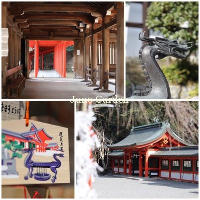 近江神宮210114